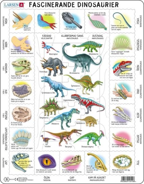 Dinosaurier Fakta