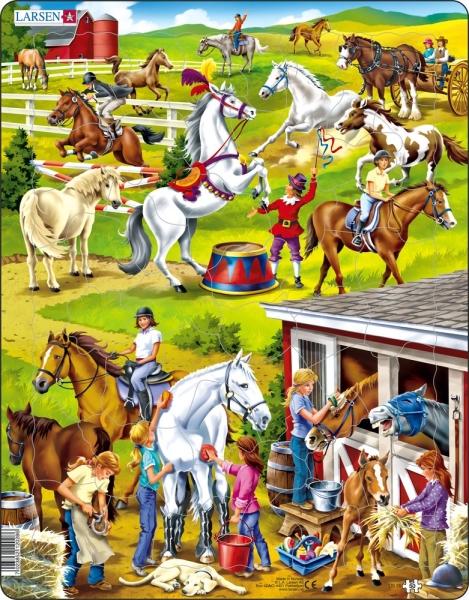 Hästar Stall
